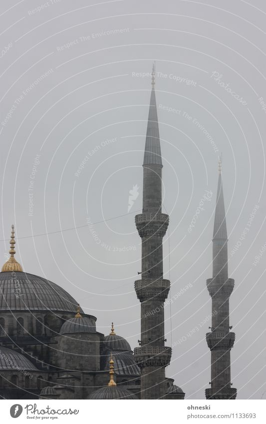 Blue mosque in grey I Bad weather Fog Rain Istanbul Mosque Blue Mosque House of worship Minaret Point Gray Religion and faith Islam Dreary Colour photo