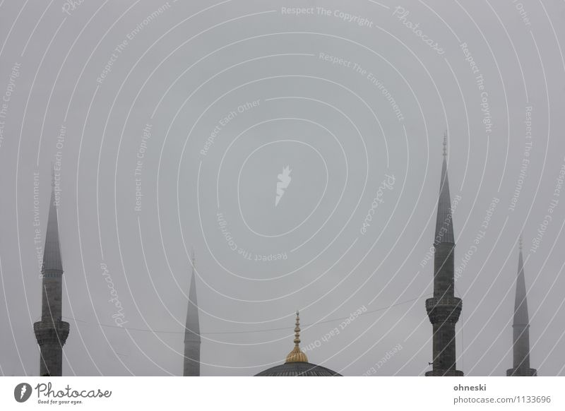 Blue mosque in grey IV Bad weather Fog Istanbul Mosque Blue Mosque House of worship Minaret Tourist Attraction Point Gray Religion and faith Dreary Colour photo