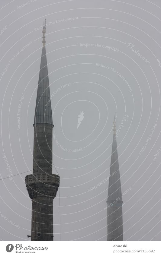 Blue mosque in grey III Bad weather Fog Istanbul Mosque Blue Mosque House of worship Minaret Gray Religion and faith Dreary Dark Colour photo Subdued colour