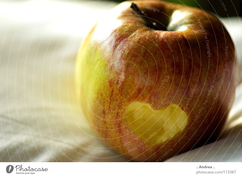 heartache Fruit Apple Heart Love Yellow Red White Longing Apple tree Colour photo