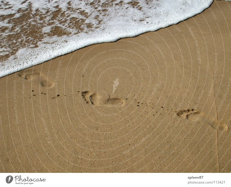 Footprints by the sea Ocean Beach Playing Summer Feet Water Sand Tracks Barefoot