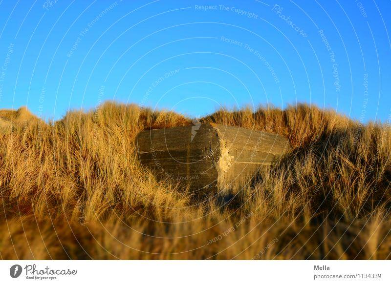 Hidden Environment Grass Dune Beach dune Marram grass Dugout Wall (barrier) Wall (building) Horror Fear of death Dangerous Animosity Apocalyptic sentiment