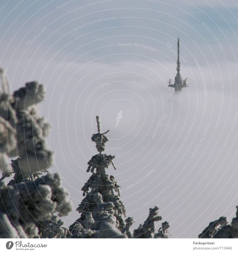 Sky Blue White Winter Clouds Forest Cold Snow Freedom Dream Vantage point Hover Antenna Saxony Transmitting station Above the clouds