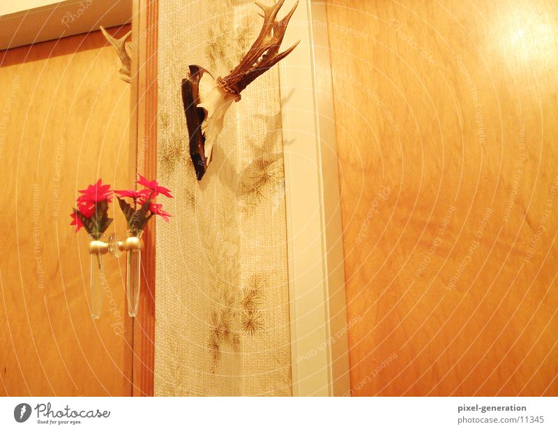 Flower Yellow Wall (building) Flat (apartment) Exceptional Decoration Mirror Antlers Suspended