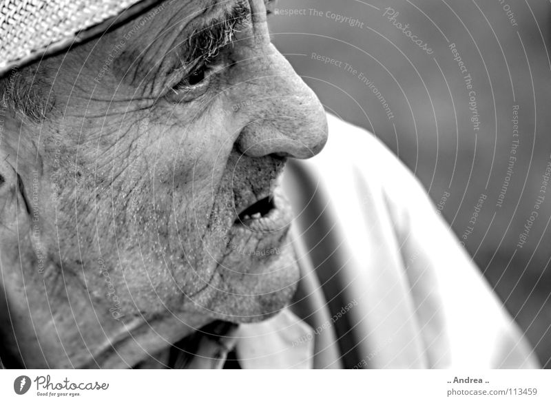 Stone (grey) old Grandfather Senior citizen Old Gray as old as the hills grandpa great-grandfather Wrinkles Black & white photo