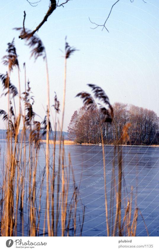 Water Lake Coast Island