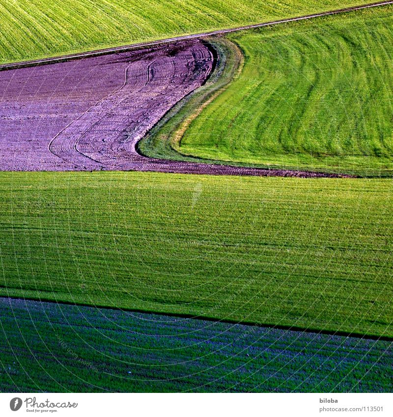 Art of farming Pattern Plow Plowed Sprout Plantlet Back-light Shadow Autumn Food Agriculture Sowing Occur Green Fresh Life Field Product Waves