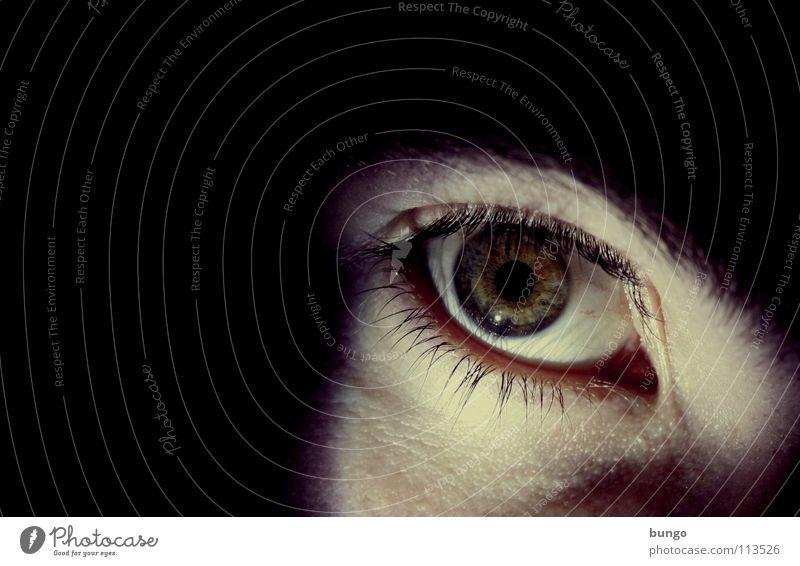 Man Face Eyes Dark Dream Fear Skin Threat Creepy Panic Eyelash Eyebrow Frightening Shock Nightmare Pupil
