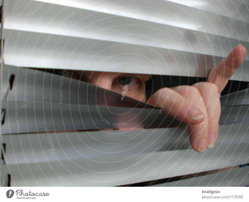 Woman Hand Eyes Gray Fingers Hide Silver Venetian blinds Disk