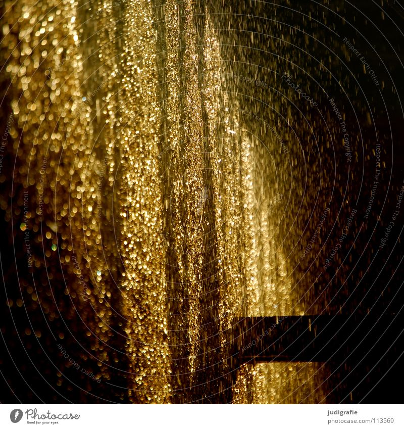 shower of gold Salt works Light Spray Wet Saltworks Blackthorn Cure Evening sun Glittering New Year's Eve Healthy Colour Beautiful Water Drops of water Gold