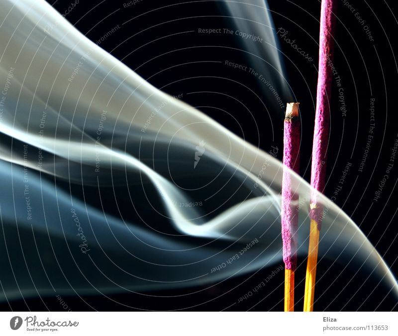 Pink incense sticks with smoke plumes in front of a black background Joss sticks Burn plumes of smoke Smoke Black Fog Tibet Temple Buddhism Purifying Feng Shui