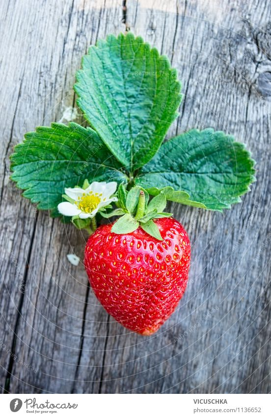 Fresh strawberry with leaves and flowers Food Fruit Dessert Nutrition Breakfast Organic produce Vegetarian diet Diet Lifestyle Style Design Healthy Eating