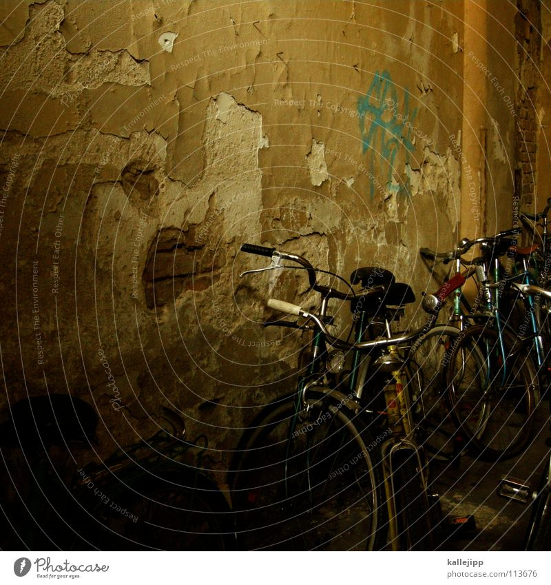 Green Grass Movement Wall (barrier) Lamp Bicycle Transport Logistics University & College student Farm Steel Wheel Ecological Seating Coat Grating