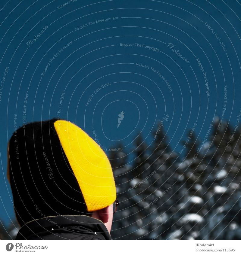 The hat. Dark Cap Black Funny Collar Anorak Jacket Tree Green Snow White Think Admiration Forwards Exterior shot Winter Sky Blue squeaky yellow unfashionable