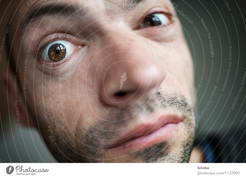 Are you looking at it? Human being Masculine Man Adults Eyes 1 30 - 45 years Looking Vista Colour photo Copy Space right Shallow depth of field