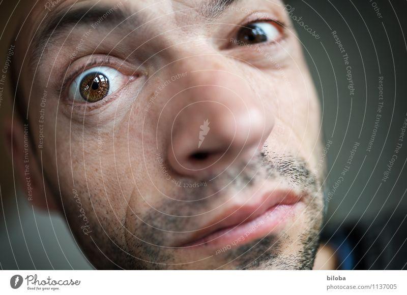 Human being Man Adults Eyes Masculine Vista 30 - 45 years