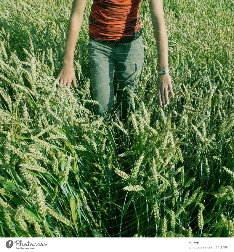 [in green] Field Cornfield Wheatfield Woman Bad weather Peace Happiness Summer Spring Physics Contentment Free Hand Air Human being Concentrate Stand Touch Jump