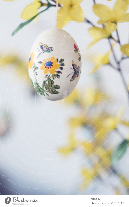 Early Decoration Easter Spring Flower Blossom Blossoming Yellow Easter egg Egg Painted Leisure and hobbies Butterfly Tit mouse Colour photo Multicoloured