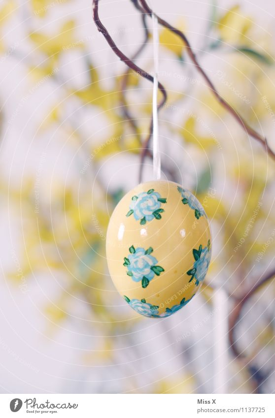 country painting Decoration Easter Kitsch Odds and ends Collector's item Hang Yellow Easter egg Branch Hen's egg Flowery pattern Painted Colour photo