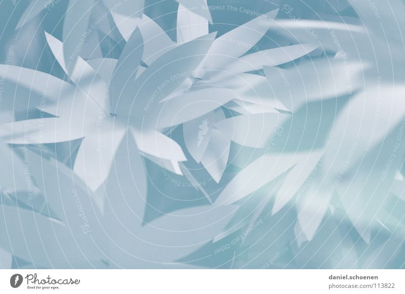 White Blue Leaf Blossom Gray Bright Background picture Paper Decoration Handicraft Light blue