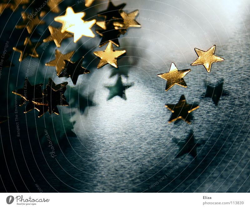 Christmas & Advent Blue Moody Feasts & Celebrations Gold Star (Symbol) Decoration Macro (Extreme close-up) Magic Christmas decoration Christmas star Enchanting