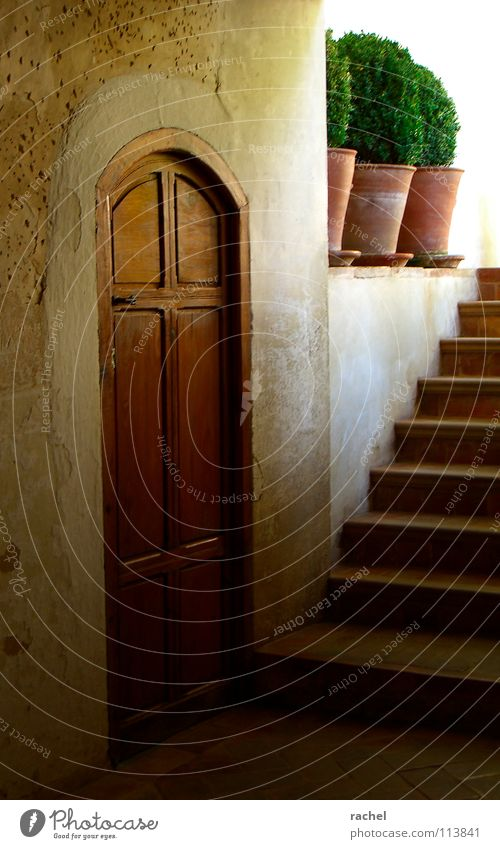 Old Vacation & Travel Sun Plant Summer Calm Relaxation Dark Wall (building) Warmth Architecture Wall (barrier) Building Moody Door Stairs
