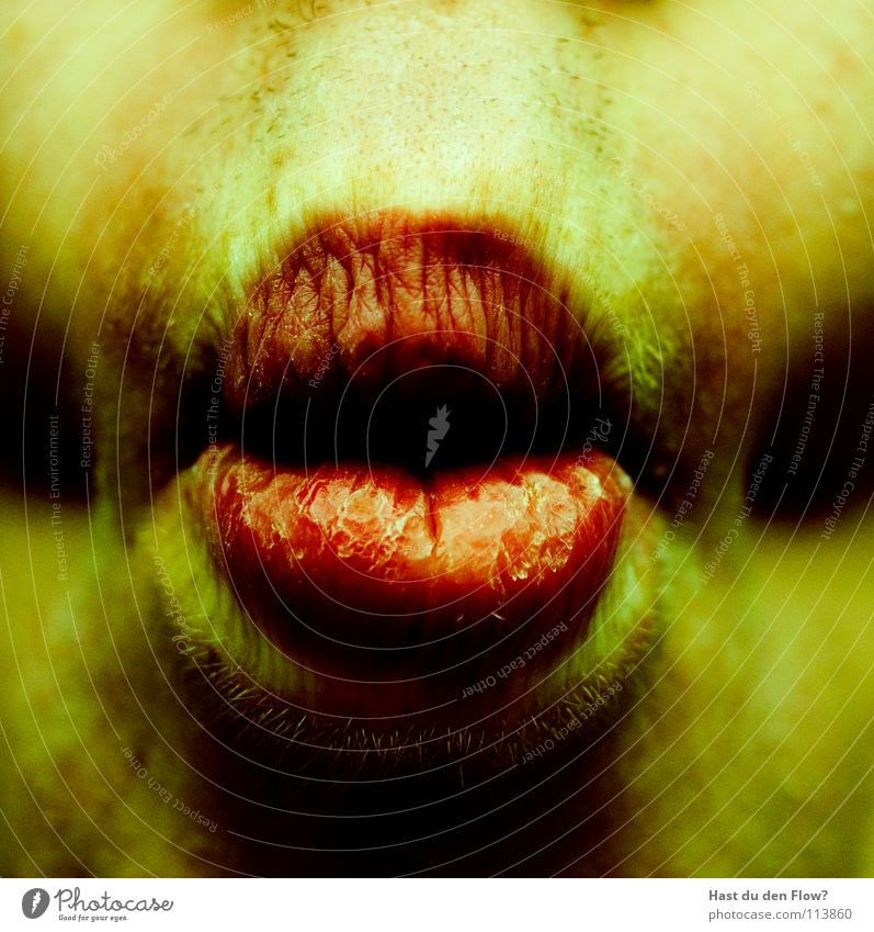 Human being Red Summer Yellow Nutrition Head Mouth Skin Fish Transience Grief Lips Part Delicious Intoxicant Distress