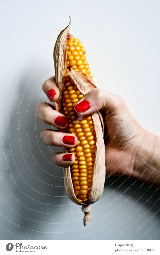 Hand White Red Yellow Fingers To hold on Long Vegetable Catch Grain Fingernail Dried Maize Nail polish Popcorn Piston