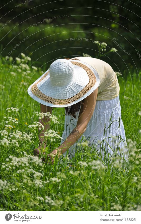 Human being Nature Youth (Young adults) Plant Green Summer Young woman 18 - 30 years Adults Feminine Garden Park Happiness Beautiful weather Castle Hat