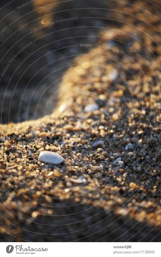 Sandy, how sandy on the beach. Art Esthetic Contentment Mussel Shell-shaped Shell sand Mussel shell Sandy beach Walk on the beach Vacation mood Summer vacation