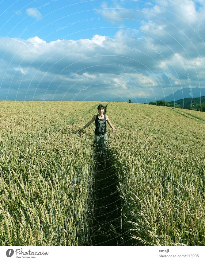one last time! Jump Field Wheat Wheatfield Cornfield Summer Spring Youth (Young adults) Happiness Clouds Healthy Autumn Playing Life Live Rotate Flee Rotated