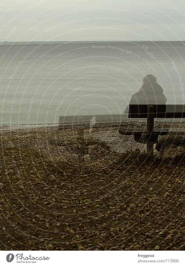 Human being Water Ocean Beach Calm Autumn Gloomy Bench Delicate Transparent Baltic Sea Ghosts & Spectres  Think Present Day