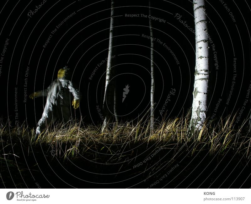 faders Yellow Gray Gray-yellow Forest Suit Protective clothing Crazy Night Long exposure Birch tree Fear Panic Dangerous deep in the woods deep in the forest