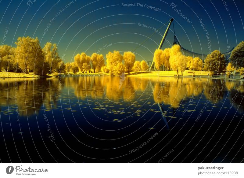 Water Sky Tree Blue Yellow Meadow Lawn Turquoise Mystic Hedge Infrared Infrared color