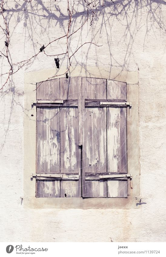 parted Wall (barrier) Wall (building) Window Shutter Stone Wood Old Beautiful Brown White Protection Calm Interest Grief Transience Change Living or residing