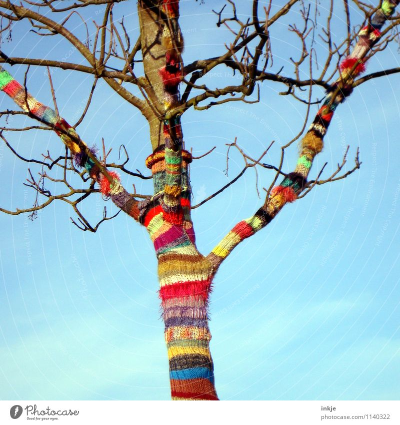 off to spring! Lifestyle Joy Leisure and hobbies Handcrafts Knit Nature Sky Spring Autumn Beautiful weather Tree Wool Line Stripe Spiral Striped Happiness