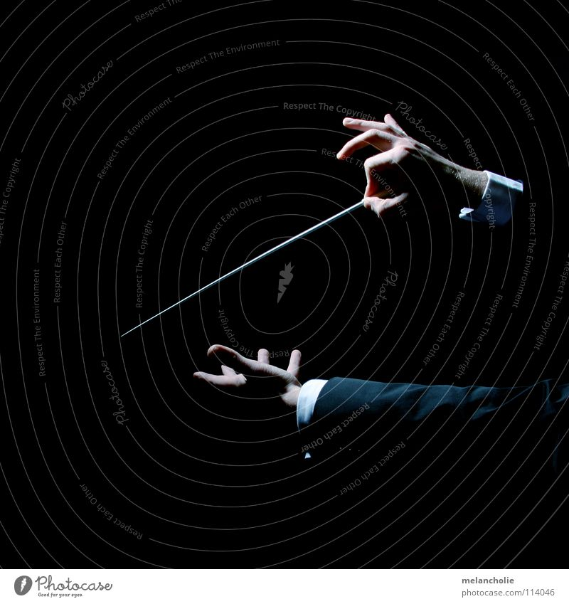 conductor Conductor Beat Fingers Hand Shadow play Concert Orchestra Audience Guest Opening Violinist Berlin State Opera Harmonious Emotions Practice Talented