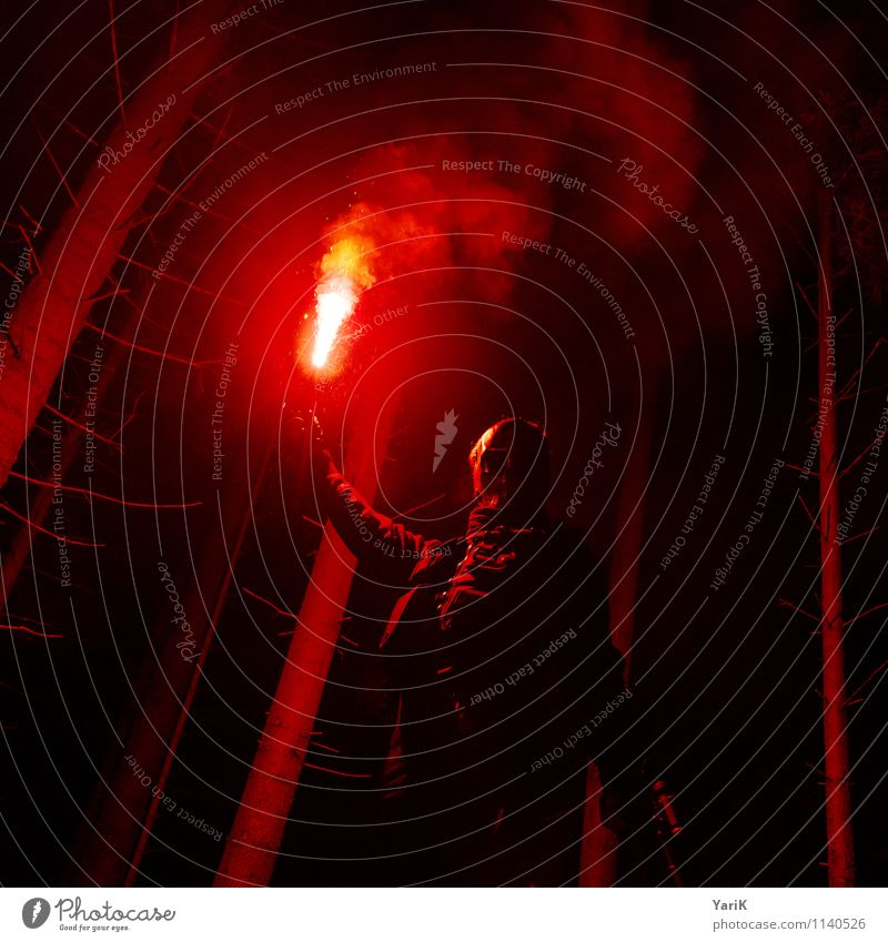 red-light woods Human being Masculine Young man Youth (Young adults) Man Adults 1 13 - 18 years Child 18 - 30 years 30 - 45 years Threat Dark Creepy Hideous Red