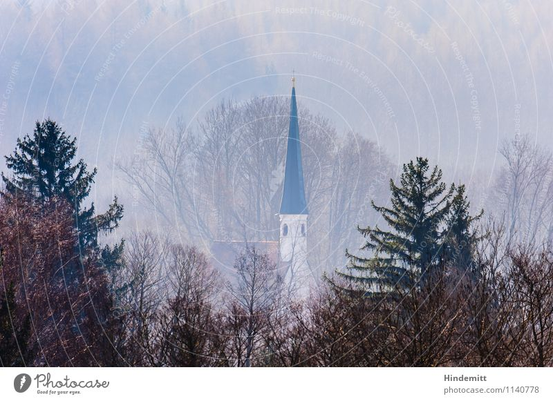 Far away ... Environment Landscape Spring Fog Tree Forest Village Church Church spire Tall Cute Point Blue Pink Safety (feeling of) Calm Tolerant Modest