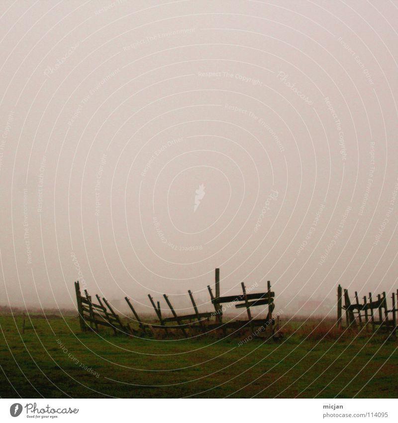 foggy Fog Fold Fence Broken Ruin Field Meadow Steam Confine Derelict Violet Green Dark Ground fog Cramped Clouds Pasture Outbreak Decompose Wood Vantage point