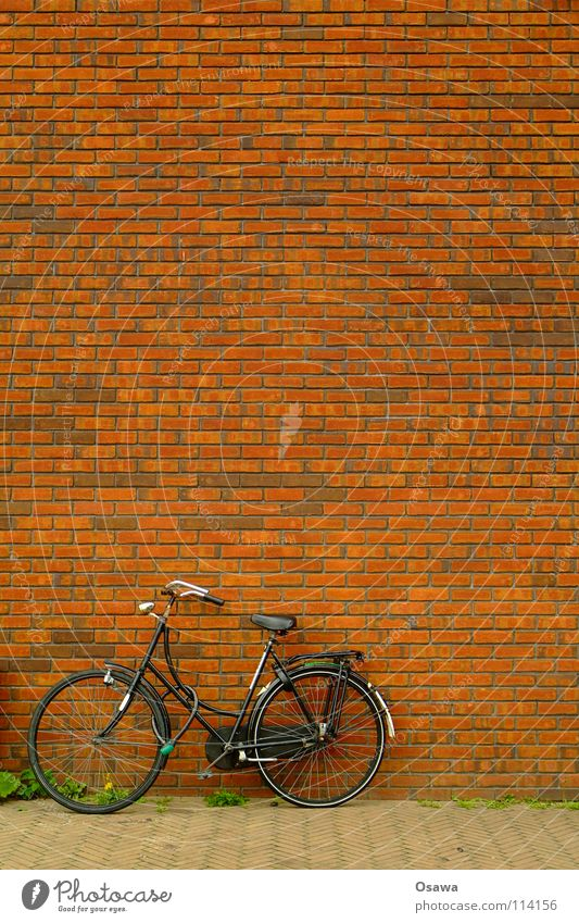 House (Residential Structure) Street Wall (building) Stone Wall (barrier) Building Bicycle Brick Sidewalk Parking Grid Netherlands Seam Lean Amsterdam