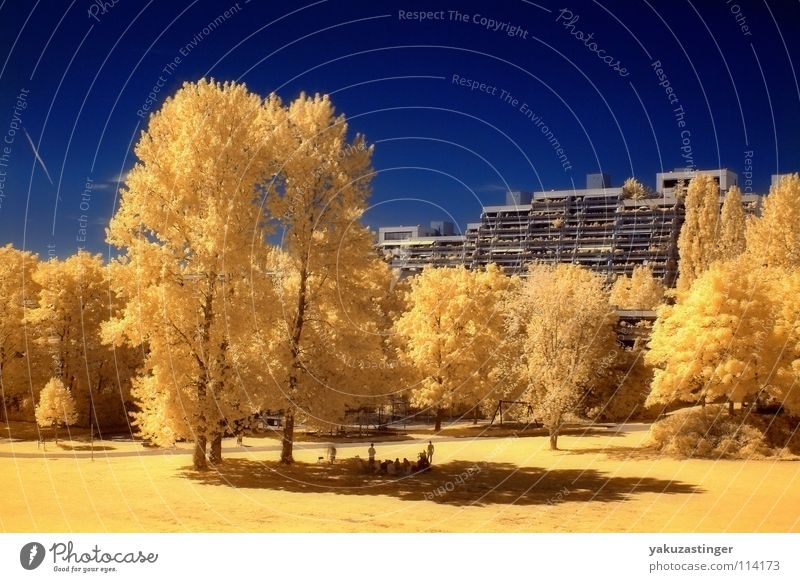 Olympic Village 2 Yellow Olympic village Summer Tree Concrete Facade Infrared Infrared color Long exposure Surrealism Blue Sky channel shifting
