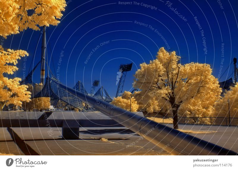 Sky Tree Blue Yellow Horizon Silver Floodlight Stadium Infrared Infrared color Olympic stadium