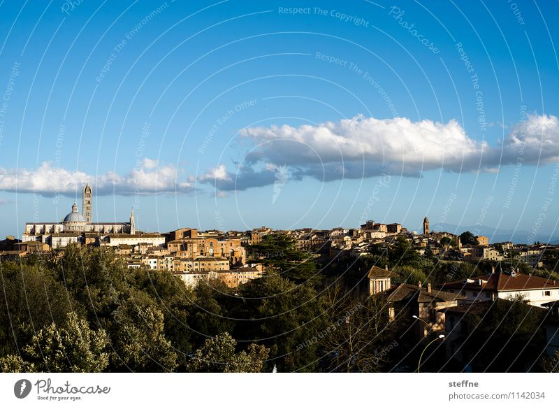 Around the World: Siena Beautiful weather Tourism Tuscany Italy Dome Hill Clouds Spring Dusk Copy Space top