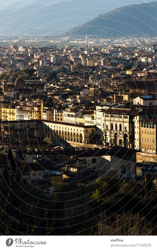 Around the World: Firenze Sunrise Sunset Tourism Florence Tuscany Italy Uffizien Evening sun Old town Vantage point Copy Space bottom