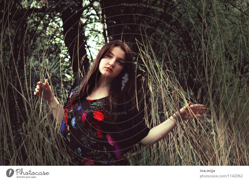 Human being Nature Youth (Young adults) Beautiful Young woman Loneliness 18 - 30 years Dark Forest Environment Adults Face Life Sadness Feminine Think