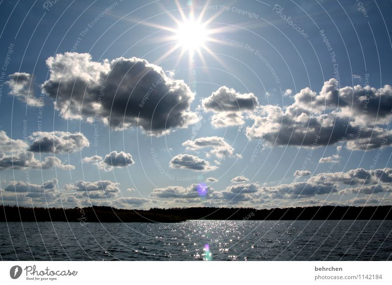*200* sunbeams... * Vacation & Travel Trip Far-off places Freedom Landscape Water Sky Clouds Sun Sunlight Spring Summer Beautiful weather Forest Lakeside Fresh