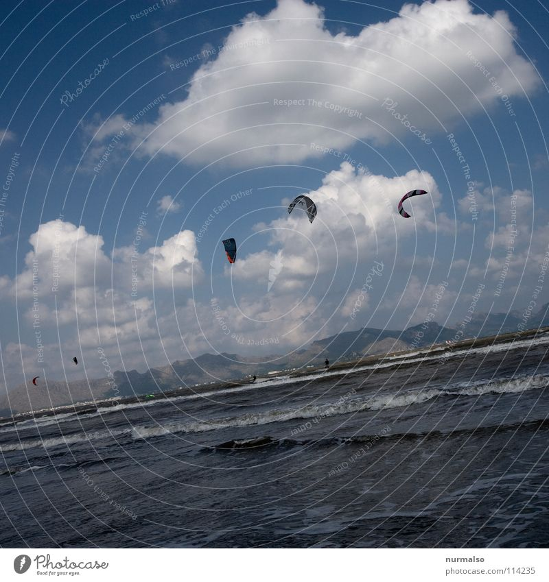 early-morning exercise Ocean Glide Hover Kite Dangerous Gale Neoprene Suit Nonconformist Surfer Beach Physics Summer Caribbean Sea Sea water Junkie Crazy Clouds