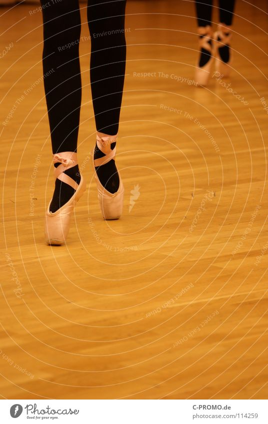 Ballet rehearsal I Parquet floor Black Swan Lake Past Vacation & Travel Concentrate Art Culture Dance Posture pointe shoes Sports Training Pattern Music