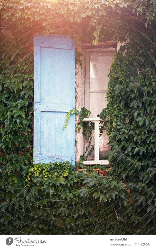 French Windows III Art Esthetic Old fashioned Overgrown Facade Blue Shutter Window pane Window board View from a window Window transom and mullion Window frame